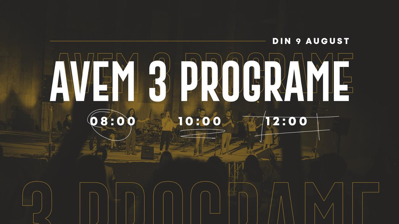 3 Programe